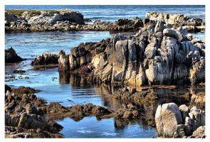 Reflecting Ocean Pools by shell4art