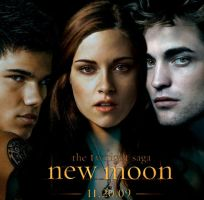 Fire and Ice-New Moon Poster by BellaX3Edward