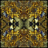 Ab09 Psychedelic 53 by Xantipa2