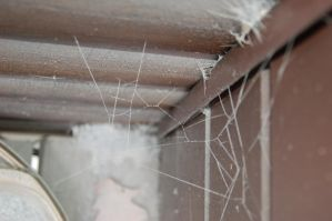 cement web 5 by beth4328