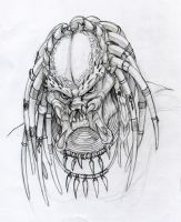 Predator Sketch by LaTopazora