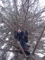 Up The Tree by alysademure