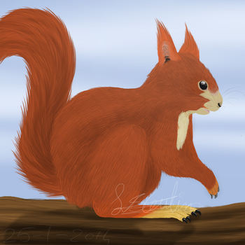 Are you nuts? by AnArtisticArtist