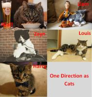 1D as cats by DirectionForLyfe