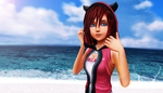 [MMD] Another Journey by RoxasXIIIAxelVIII