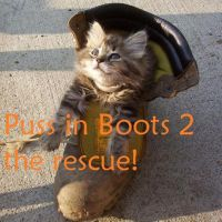 Real Puss in Boots by DUDE8810