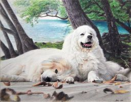 Pyrenees dogs commissioned 2 by cuppa-chino