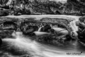 Log Across the River BW by mjohanson