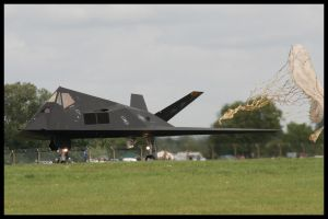 RIAT 2007 - F117 Nighthawk - 2 by HaVoCMaN