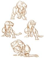 Smilotyrannus Studies by thomastapir