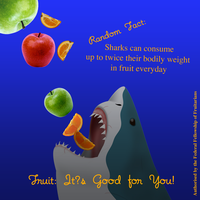 Fruitarian Shark Advertisement by Woollahra