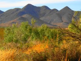 San Andres Mountains by SharPhotography