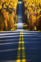 Autumn road by Mndcntrl