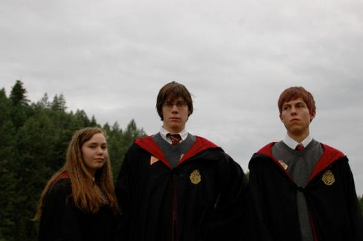 Depressed Harry Potter Trio by Punkle