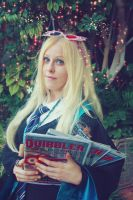Luna Lovegood and the Quibblers cosplay by MissWeirdCat