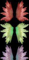 Set of 3 Angel Faery Wings by FantasyStock