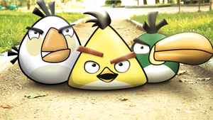 The Real Life:Angry Birds #2 by nikitabirds