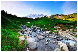 Rainier Stream by Raymaker