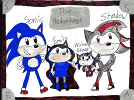 The Hedgehogs by emerswell