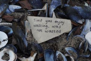 Time Not Wasted by Rhiallom