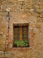 Tuscan Window by LeighWhittaker