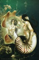 Nautilus by babsartcreations