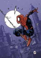 Spider-man and his web by geraldohsborges