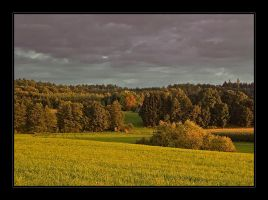 after the thunderstorm by Hartmut-Lerch