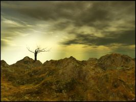 The Old Hanging Tree by Everild-Wolfden