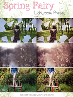 LR preset: Spring Fairy by DorottyaS