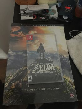 Breath of the Wild - New Zelda for a New Console by DestinyDecade