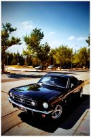 65 Fastback by mcaksoy