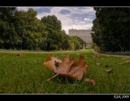 Madrid - Royal Palace 3 by Klek