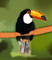 Toucan Typography by amyleeboy16