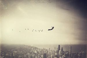 Free as birds by CharllieeArts