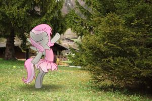 Sweet Shutter as Ballerina (MLP in real life) by StormXF3