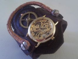 Magnetic Coil Watch by davevdveer