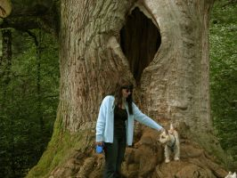 My wife ahead of an old oak by WilliamSnape