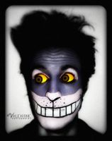 "Make-up: ""The Cheshire Cat"" by aValentine"