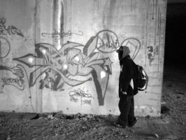 Freestyle Wildstyle by noxiousone