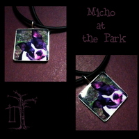 Micho at the Park by angelfunkstudio