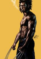 Wolverine by SantaFung