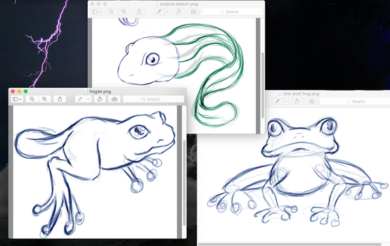 Tadpole, Froglet and Frog sketches by Izzabell