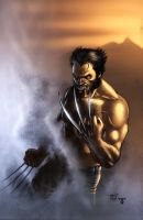 Another Wolverine by juan7fernandez