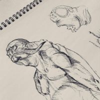 _01_Creature_Sketch by T-Eight