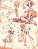 The Fox Human - Nude Sketches by ToilettenMassaker