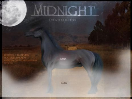 Mindnight picture by CariaStock
