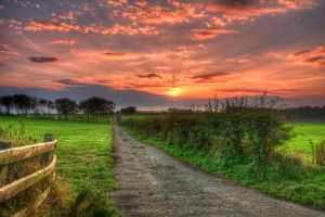 Sunset over knockagh fields by marklewisphotography