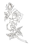 rose lineart by valkyriechan