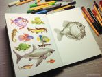 Fish sketching by alxferreiro